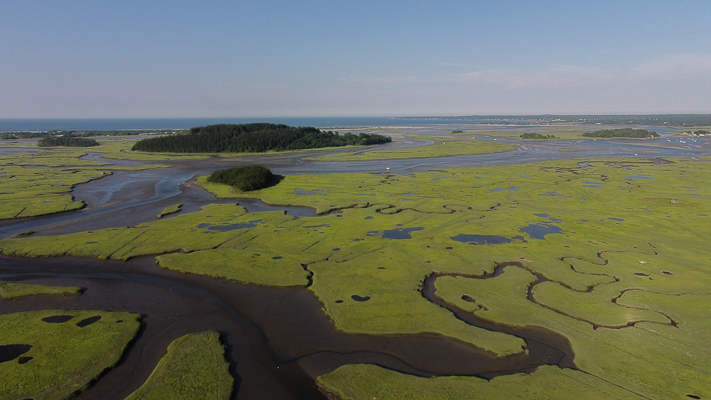 Salt Marshes in Essex Massachusetts