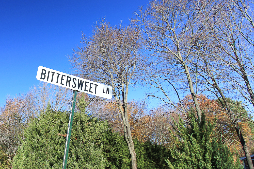 Bittersweet Lane sign in Hamilton, MA