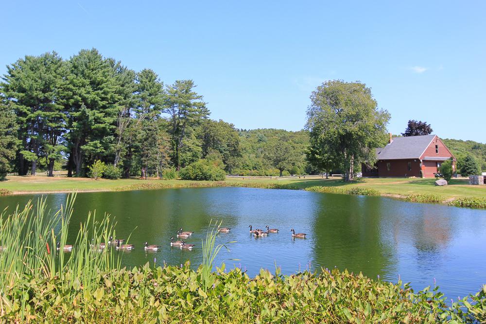 Weaver Pond Patton Park Hamilton, MA