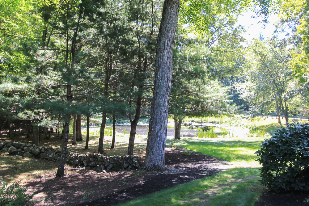 Side yard with neighbors pond 48 Boren Lane Boxford Massachusetts