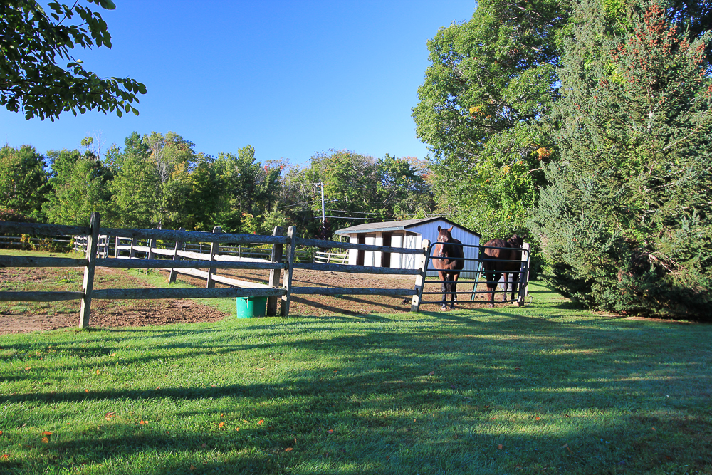 Paddock and barn 245 Sagamore Street Hamilton Massachusetts