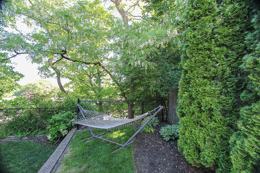 Hammock in the back side yard 14 Myles Road Peabody MA