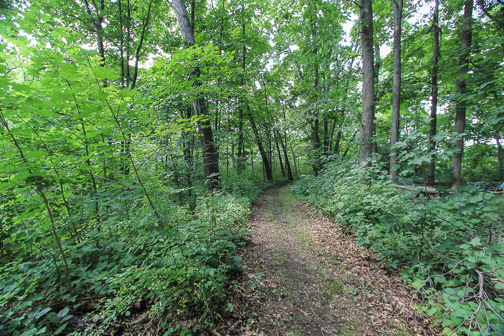 Trail near 298 High Street Ipswich MA
